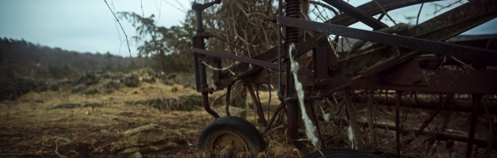 Lambing Season, Middlebury New Filmmaker Festival 2016