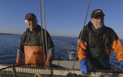The Last Bay Scallop?, Middlebury New Filmmaker Festival 2016